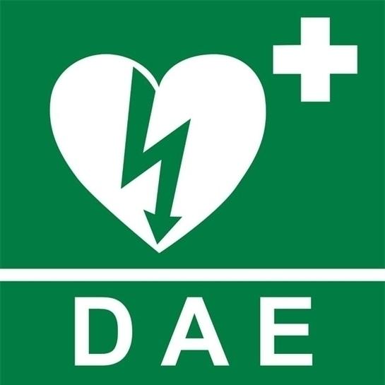 DAE-cartello_alta