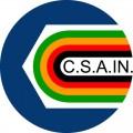 LogoCsain